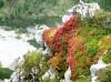 Jesenske barve in prve snežinke napovedujejo jesen v gorah.