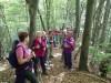Pot na Mrzli vrh je kar strma, a k sreči poteka v prijetnem  zavetju gozda.