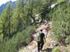 V dolino smo sestopili po nemarkirani stezi z Njivic.